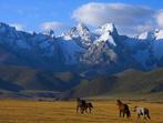 Киргизстан - любопитна кулинарна история