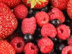 """Горски плодове със сос """"Сабайон"""""""