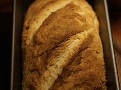 Плодов хляб