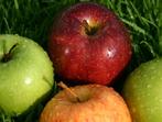 Ябълково пюре с канела