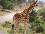 Танзания - царство на разнообразие