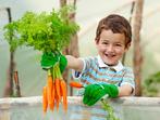 Защо трябва да ядем повече моркови