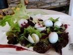 Хрупкава салата с пъдпъдъчи яйца
