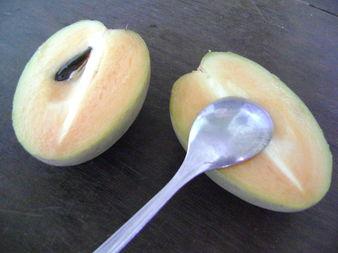 Сапоте - плодът, който всеки трябва да познава
