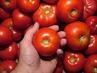 Интересен начин за съхраняване на домати за зимата