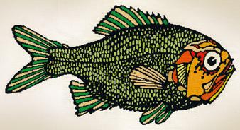 Кои видове риба трябва да избягваме и защо?